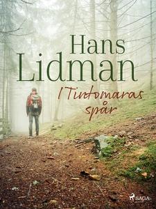 I Tintomaras spår (e-bok) av Hans Lidman