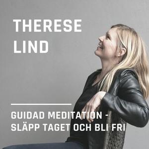 Släpp taget och bli fri (ljudbok) av Therese Li