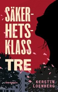Säkerhetsklass tre (e-bok) av Kerstin Loenberg