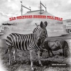 När cirkusen kommer till stan (e-bok) av Arne H