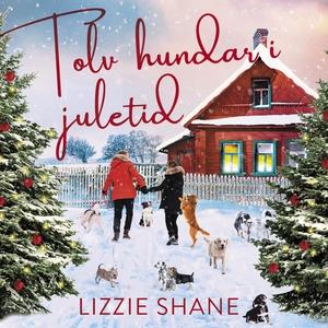 Tolv hundar i juletid (ljudbok) av Lizzie Shane