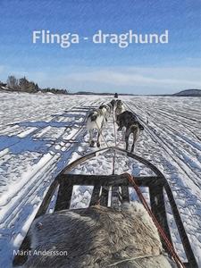 Flinga - draghund (e-bok) av Märit Andersson