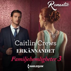 Erkännandet (ljudbok) av Caitlin Crews