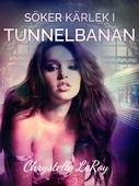 Söker kärlek i tunnelbanan - erotisk novell