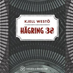 Hägring 38 (ljudbok) av Kjell Westö