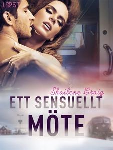 Ett sensuellt möte - erotisk novell (e-bok) av