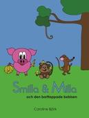 Smilla och Milla och den borttappade bebisen