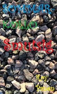 SOMMARKOLLO Smutsig (e-bok) av Roy Panen