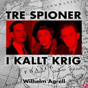Tre spioner i kallt krig (ljudbok) av Wilhelm A