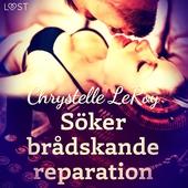 Söker brådskande reparation - erotisk novell