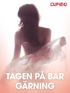 Tagen pa° bar ga¨rning – erotiska noveller (e-b