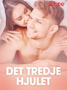 Det tredje hjulet - erotisk novell (e-bok) av C