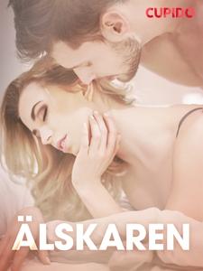 Älskaren - erotiska noveller (e-bok) av Cupido