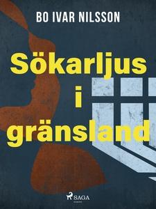 Sökarljus i gränsland (e-bok) av Bo Ivar Nilsso