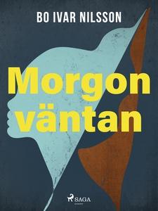 Morgonväntan (e-bok) av Bo Ivar Nilsson