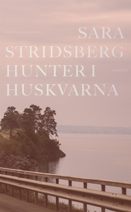Hunter i Huskvarna (e-bok) av Sara Stridsberg