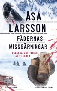 Fädernas missgärningar (e-bok) av Åsa Larsson
