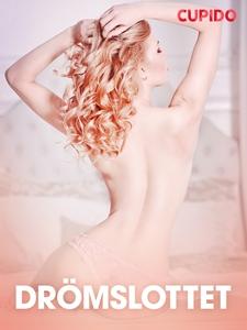 Drömslottet - erotiska noveller (e-bok) av Cupi