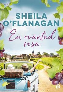 En oväntad resa (e-bok) av Sheila O'Flanagan