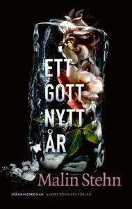 Ett gott nytt år (e-bok) av Malin Stehn