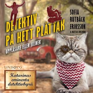Detektiv på hett plåttak (ljudbok) av Sofia Rut