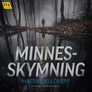 Minnesskymning (ljudbok) av Mattias Kuldkepp