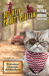 Detektiv på hett plåttak (e-bok) av Sofia Rutbä