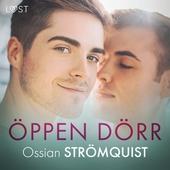 Öppen dörr - erotisk novell