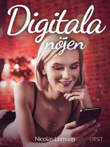 Digitala nöjen - erotisk novell (e-bok) av Nico
