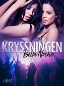 Kryssningen - erotisk novell