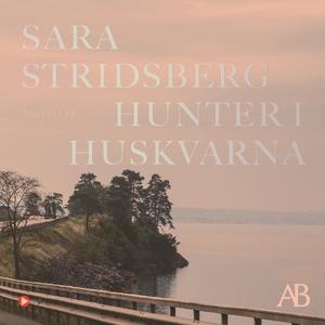 Hunter i Huskvarna (ljudbok) av Sara Stridsberg
