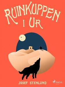 Ruinkuppen i Ur (e-bok) av Josef Stenlund