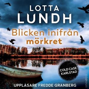 Blicken inifrån mörkret (ljudbok) av Lotta Lund
