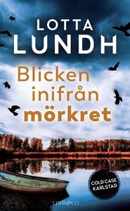 Blicken inifrån mörkret (e-bok) av Lotta Lundh