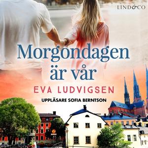 Morgondagen är vår (ljudbok) av Eva Ludvigsen