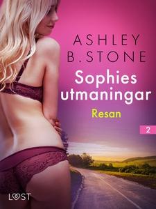 Sophies utmaningar 2: Resan - erotisk novell (e