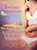 Tågresan 4 - Måne över Marseille - erotisk novell