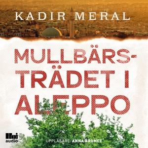 Mullbärsträdet i Aleppo (ljudbok) av Kadir Mera