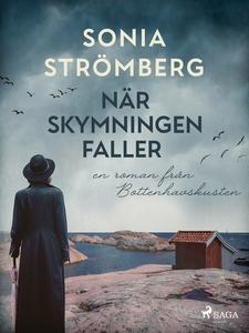 När skymningen faller (e-bok) av Sonia Strömber