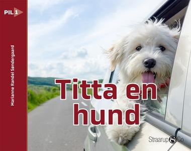 Titta en hund (e-bok) av Marianne Randel Sønder