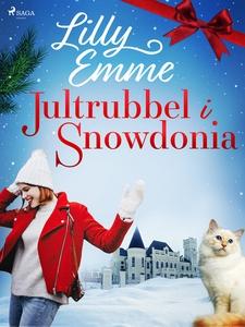 Jultrubbel i Snowdonia (e-bok) av Lilly Emme