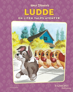 Ludde - en liten valps äventyr (e-bok) av Annie
