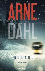 Indland (lydbog) af Arne Dahl