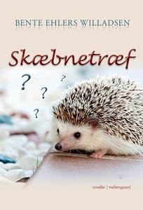 Skæbnetræf (e-bog) af Bente Ehlers Wi