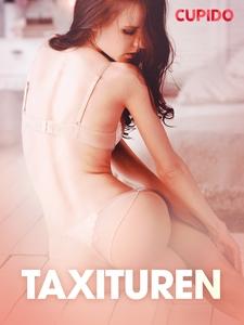 Taxituren - erotiske noveller (ebok) av Cupid