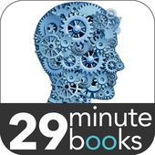 Affordable eStrategy - 29 Minute Books - Audio