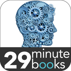 Affordable eStrategy - 29 Minute Books - Audi