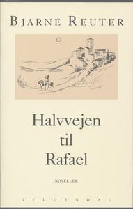 Halvvejen til Rafael (e-bog) af Bjarn