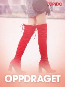 Oppdraget – erotisk novelle (ebok) av Cupido