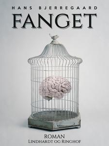 Fanget (e-bog) af Hans Bjerregaard